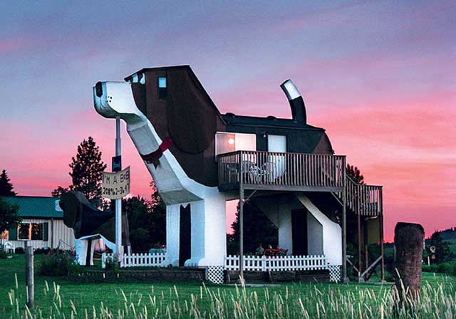 8-dog-bark-park-inn